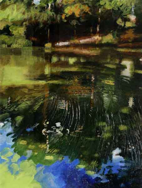 shadows-and-light-on-the-pond