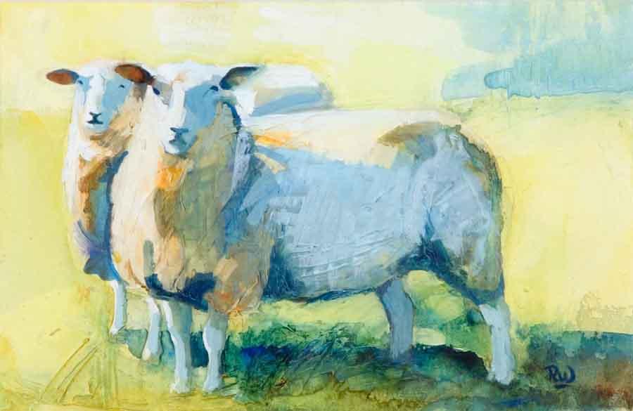 sheep-study-1