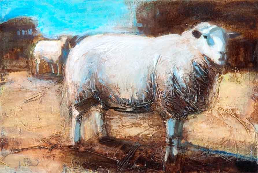sheep-study-2